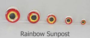H2O Lightweight Dumbells Rainbow Sunpost