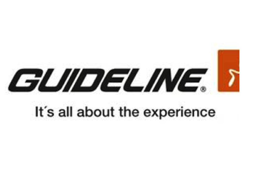 Guideline Sale