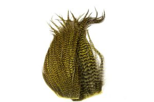 Whiting Bugger Pack Grizzly Dyed Olive