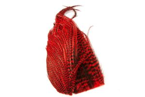 Whiting Bugger Pack Grizzly Dyed Red